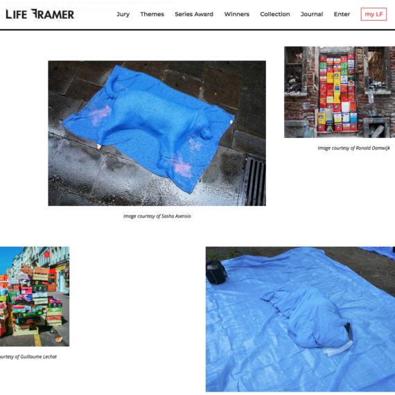 Sasha Asensio Life Framer Colour Theme